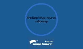 Nordland Unge Høyres valgkamp