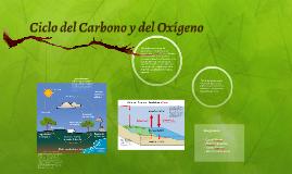 Ciclo del Carbono y del Oxígeno