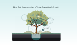 Copy of How Salt Concentration affects Cress Seed Growth