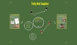 Tulip Bed Su