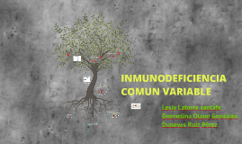 INMUNODEFICIENCIA COMUN VARIABLE (CVID)