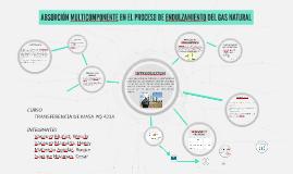 ABSORCIÓN MULTICOMPONENTE EN EL PROCESO DE ENDULZAMIENTO DEL