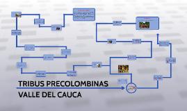 Copy of TRIBUS PRECOLOMBINAS VALLE DEL CAUCA