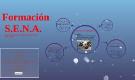 Copy of formacion  S.E.N.A.