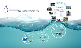 Willsoon Company Presentation