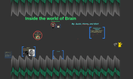 Inside the world of Brain