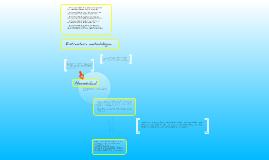Estructura metodologica