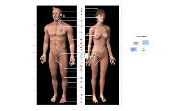 injerto e implante