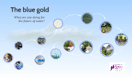 The blue gold
