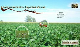 Recursos Naturales e Impacto Ambeintal