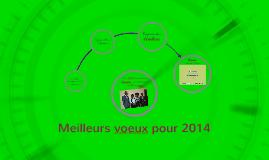 Meilleurs voeux pour 2014 - MANEGERE Afrique