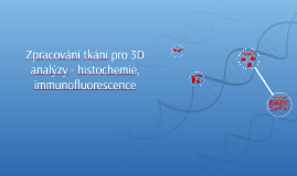 Zpracování tkání pro 3D analýzy - histochemie, immunofluores