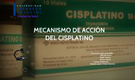 MECANISMO DE ACCION DEL SISPLATINO