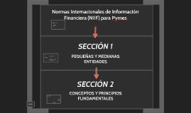 SECCION 1