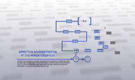 DIRECTIVA ADMINISTRATIVA N° 210-MINSA/DGSP.V.01