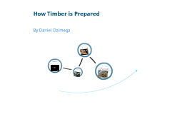 How Timber Is Prepared