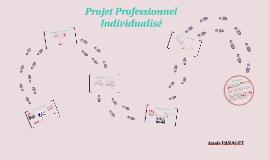 Projet Professionnel Individualisé