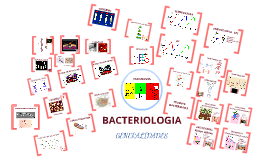 Copy of BACTERIOLOGIA