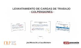 Copy of LEVANTAMIENTO DE CARGAS DE TRABAJO