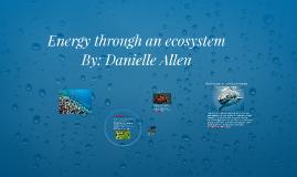 Energy through an ecosystem