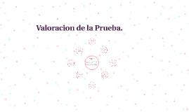 Valoracion de la Prueba.