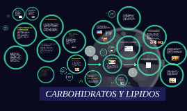 Copy of CARBOHIDRATOS Y LIPIDOS