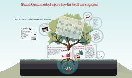 one tier canadian health care system Where do major parties stand on health care we asked  two tier medicare i think is not in the interests of the health care system it will lead inexorably to better care for people who can .