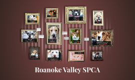 Why the SPCA Matters