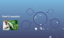 Hanf (Cannabis)