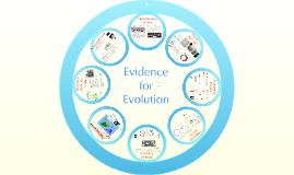Copy of AP Bio- Evolution 3:  Evidence of Evolution