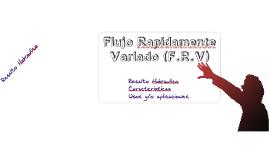 Copy of Copy of Flujo Rapidamente Variado