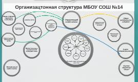 Организацтонная структура МБОУ СОШ №14