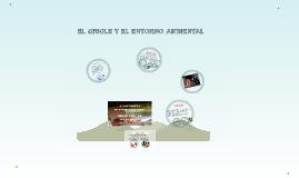 EL CHICLE Y EL ENTORNO AMBIENTAL