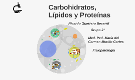 Copy of Carbohidratos, Lipidos y Proteinas