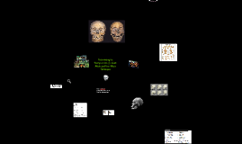 Copy of Determining the Biological Sex of a Skull: Metric and Non-Me