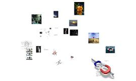 Ciclo virtuoso vicioso - teia sistêmica Homem-Universo