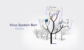 Virus Epstein Barr