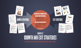 GROWTH AND EXIT STRATEGIES