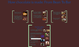 Copy of Chocolate And How It's Made