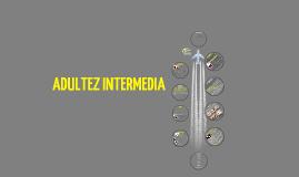 Copy of Adultez Intermedia