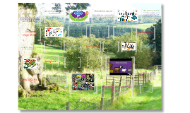 La Biodiversidad.