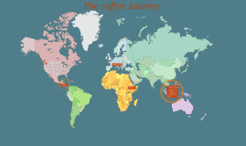 Copy of the coffee journey