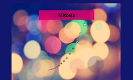 Mitosis
