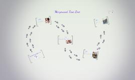 Marymount Barranquilla History