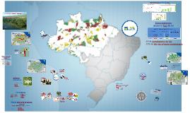 GIZ Fevereiro 2014 - Auditoria Coordenada Amazônia