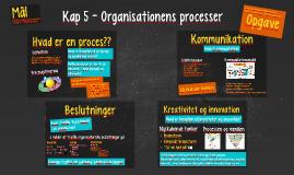 Kap 5 - Organisationens processer