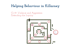 Helping Behaviour Experiment