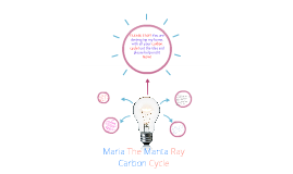 Maria The Manta Ray Carbon Cycle