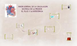 Copy of VISIÓN GENERAL DE LA CIRCULACIÓN; BIOFÍSICA DE LA PRESIÓN, E