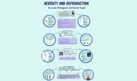 Heredity and Reroduction